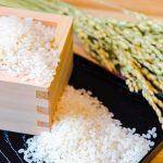 一度は食べたいブランド米!新潟県が誇る「魚沼産コシヒカリ」