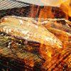 鹿児島の港町で味わう♪鮮度バツグンな「カツオ」を使った様々なグルメ!