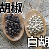 「黒胡椒」と「白胡椒」の違いって何?