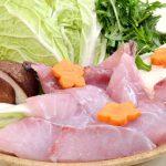 幻の魚を堪能!冬のごちそう。和歌山の「クエ鍋」