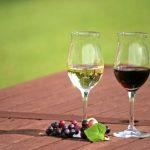 今夜はBARで一杯…♪高品質なぶどうからできる長野のおいしい「ワイン」