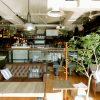 バルやカフェなど幅広く展開中!若いスタッフが多い会社です☆彡