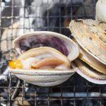 愛知で食べる「伊良湖の大アサリ」は旨みが止まらない!?